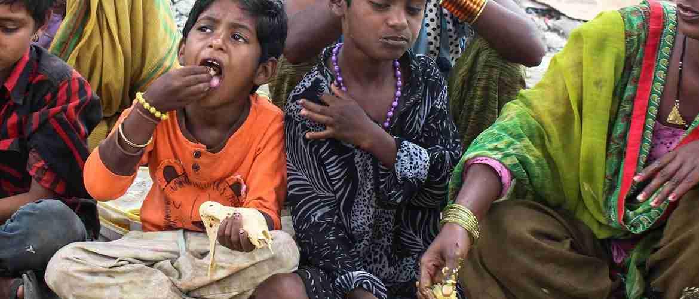 Food Shelters, Bihar